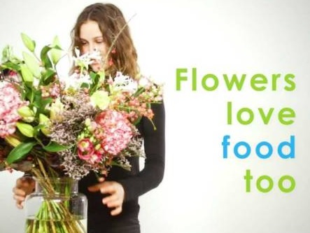 Floralife Express & Floriology: Flowers are Foodies Too!